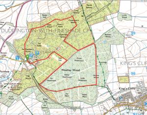 Fineshade Wood OS MAp